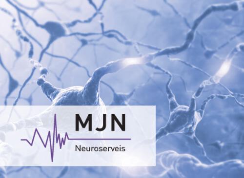 MJN Neuroserveis - predicting epileptic seizures